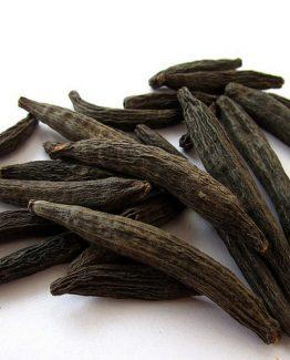 Kapok Buds (Marathi Moggu)